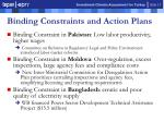 binding constraints and action plans