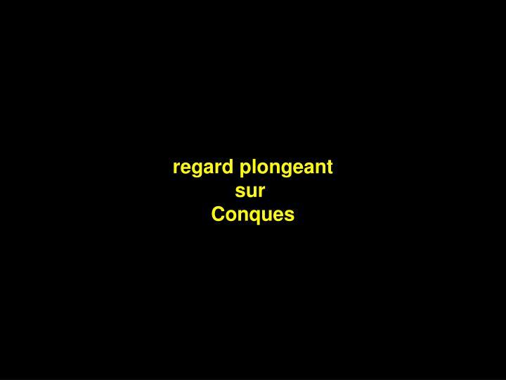 regard plongeant