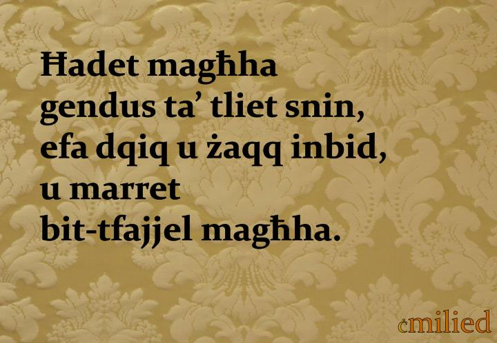 Ħadet magħha