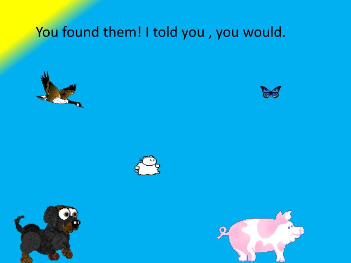 You found them!