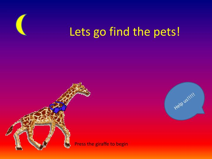Lets go find the pets!