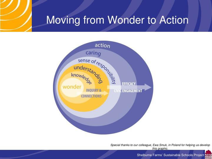 Moving from Wonder to Action