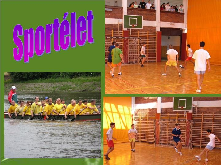 Sportélet