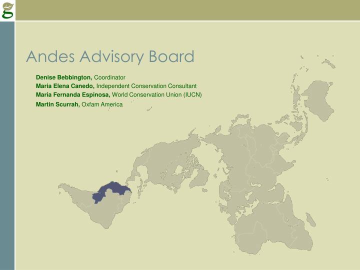 Andes Advisory Board