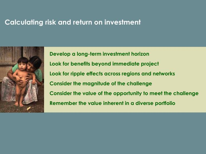Calculating risk and return on investment