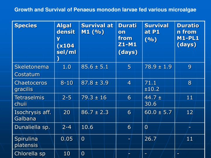Growth and Survival of Penaeus monodon larvae fed various microalgae