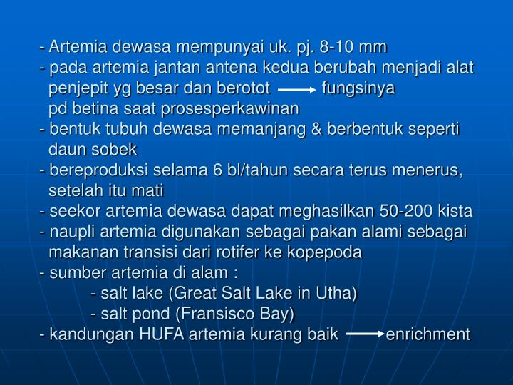 Artemia dewasa mempunyai uk. pj. 8-10 mm