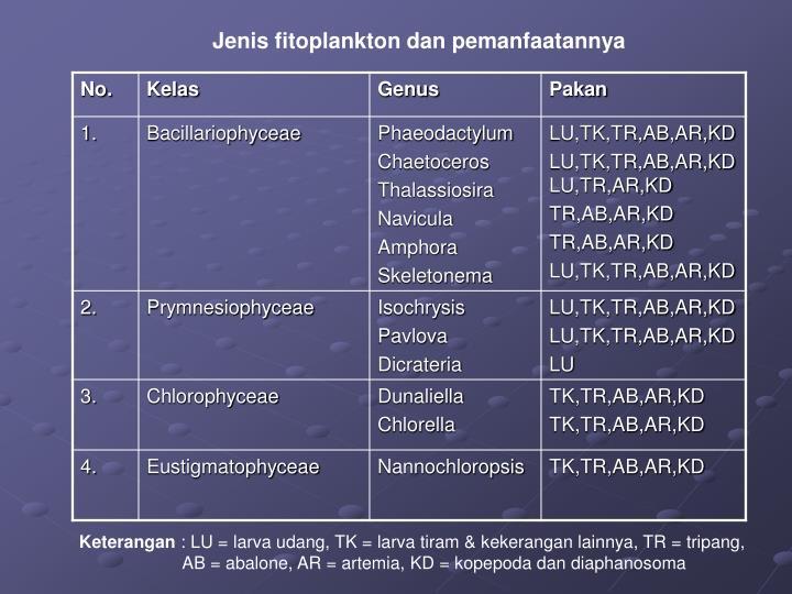 Jenis fitoplankton dan pemanfaatannya
