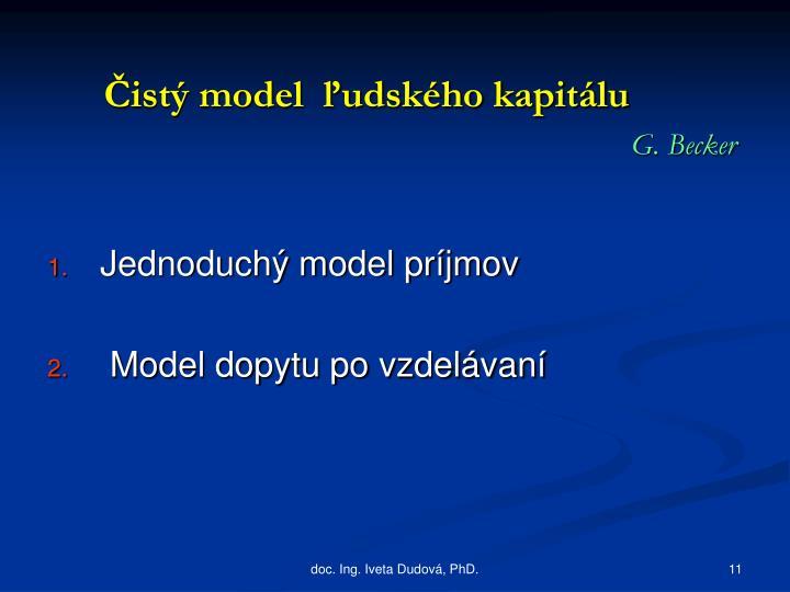 Čistý model  ľudského kapitálu