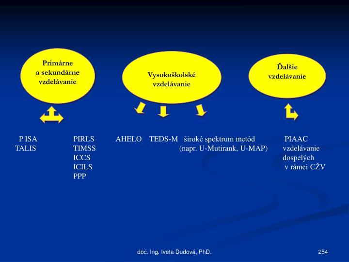 P ISAPIRLS    AHELO    TEDS-M   široké spektrum metód    PIAAC