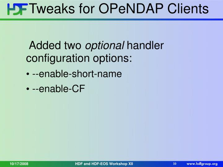 Tweaks for OPeNDAP Clients