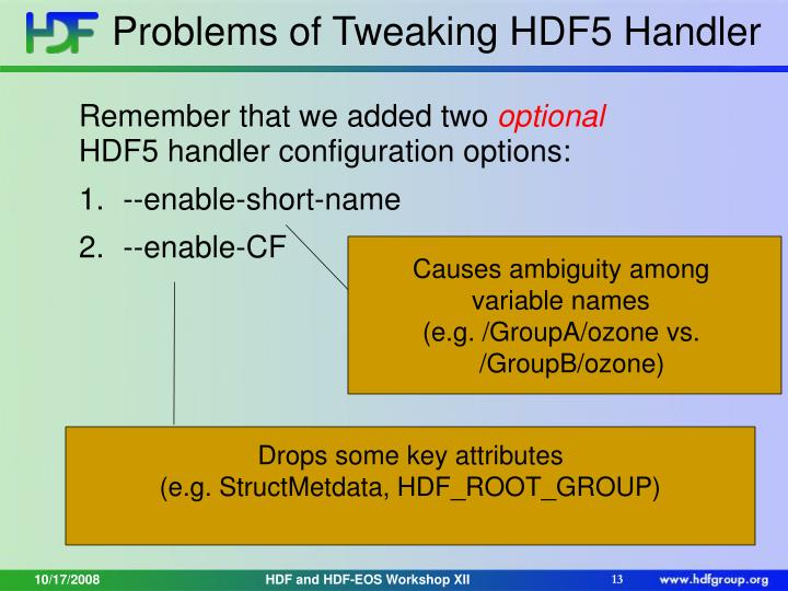 Problems of Tweaking HDF5 Handler