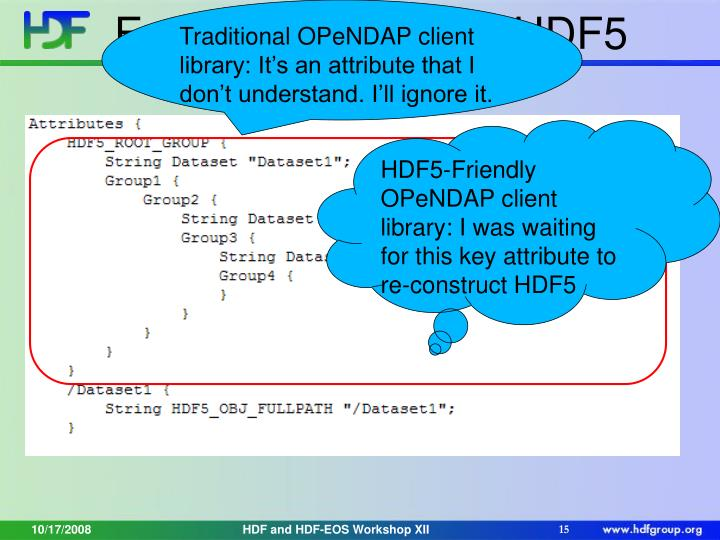 Traditional OPeNDAP client library: It's an attribute that I don't understand. I'll ignore it.