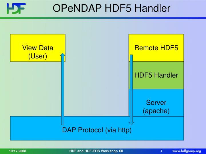 OPeNDAP HDF5 Handler