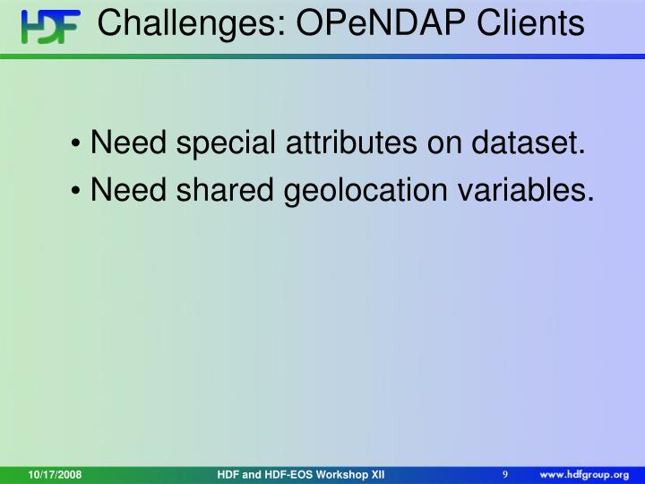 Challenges: OPeNDAP Clients