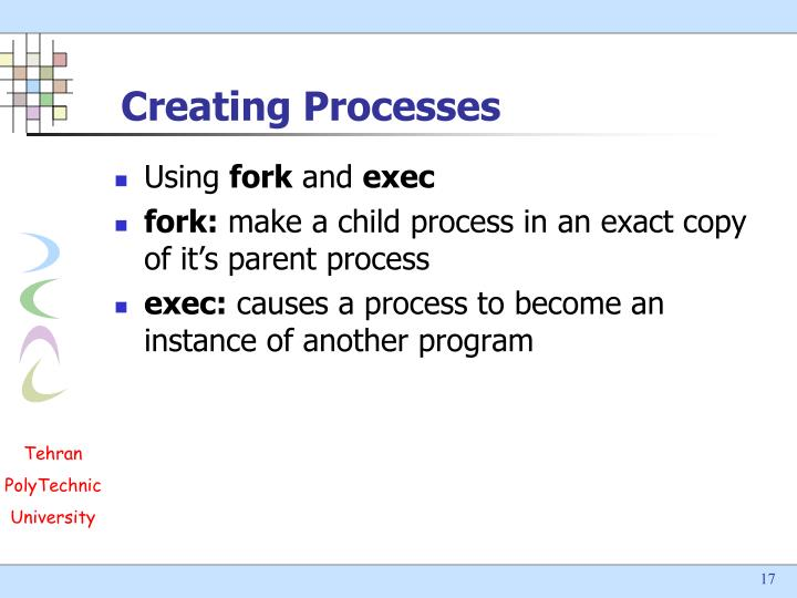 Creating Processes