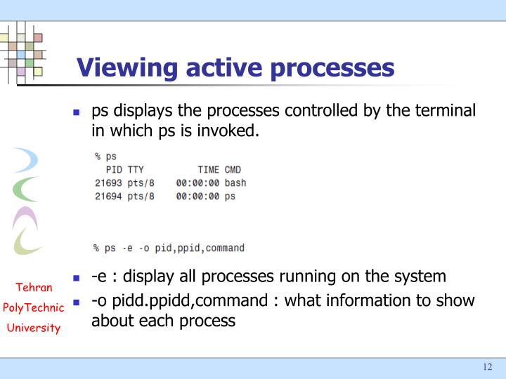 Viewing active processes