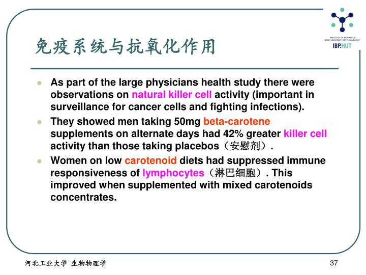 免疫系统与抗氧化作用