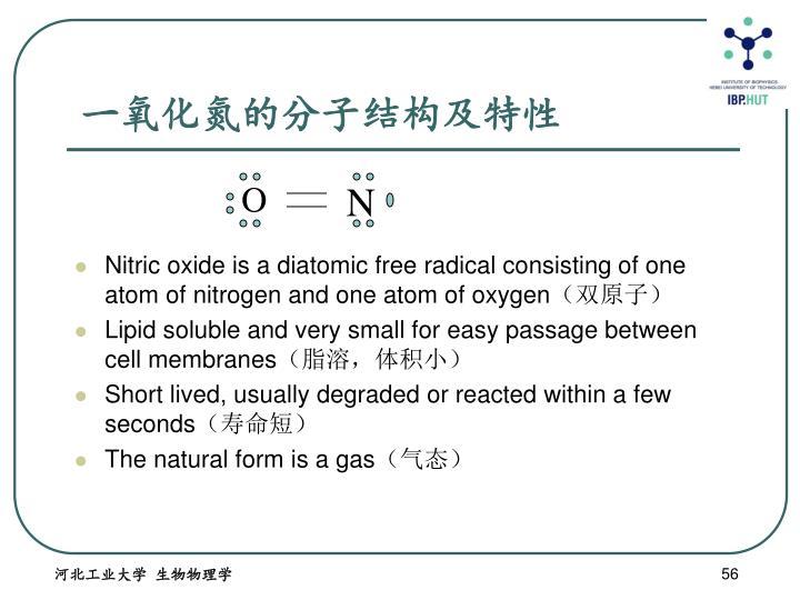 一氧化氮的分子结构及特性