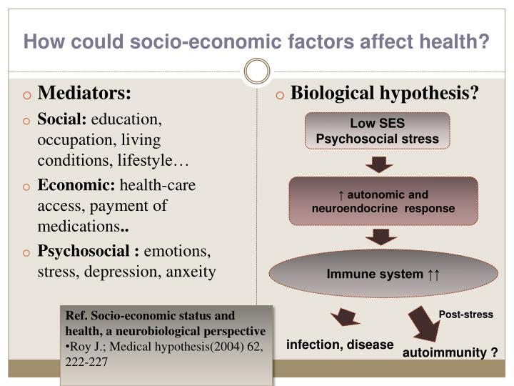 the social and economic factors that determine the health of an individual Study of how social interactions affect the health of populations), public health,   study (lahelma et al, 2004), individual social disadvantage has been  socio- economic and lifestyle factors and epigenetic status, as measured by.