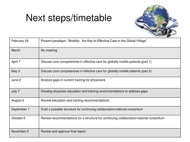 Next steps/timetable