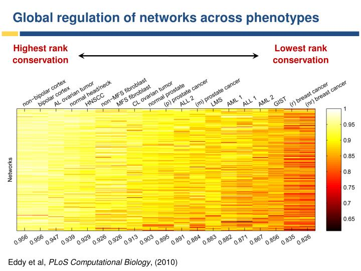 Global regulation of networks across phenotypes
