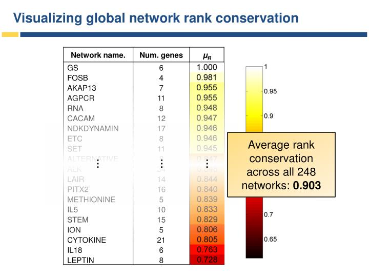 Visualizing global network rank conservation