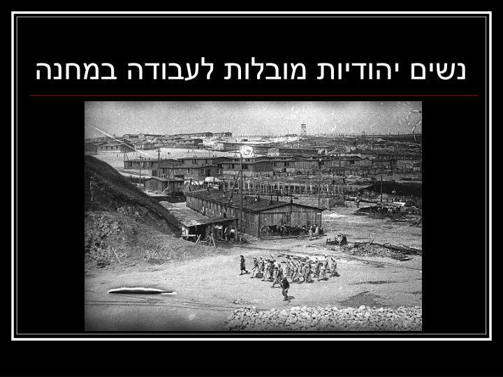 נשים יהודיות מובלות לעבודה במחנה