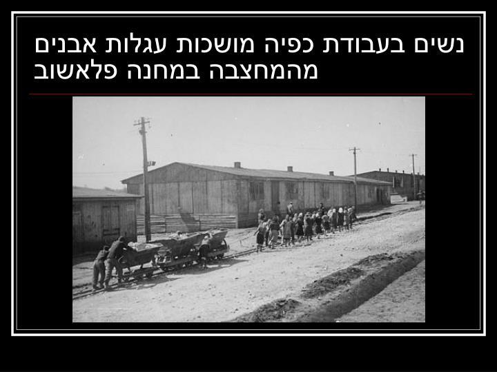 נשים בעבודת כפיה מושכות עגלות אבנים מהמחצבה במחנה פלאשוב