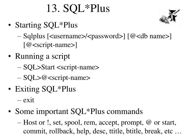 13. SQL*Plus