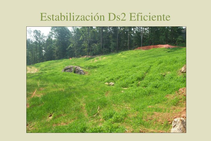 Estabilización Ds2 Eficiente