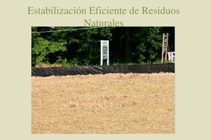 Estabilización Eficiente de Residuos Naturales