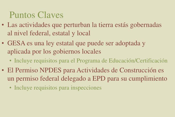 Puntos Claves
