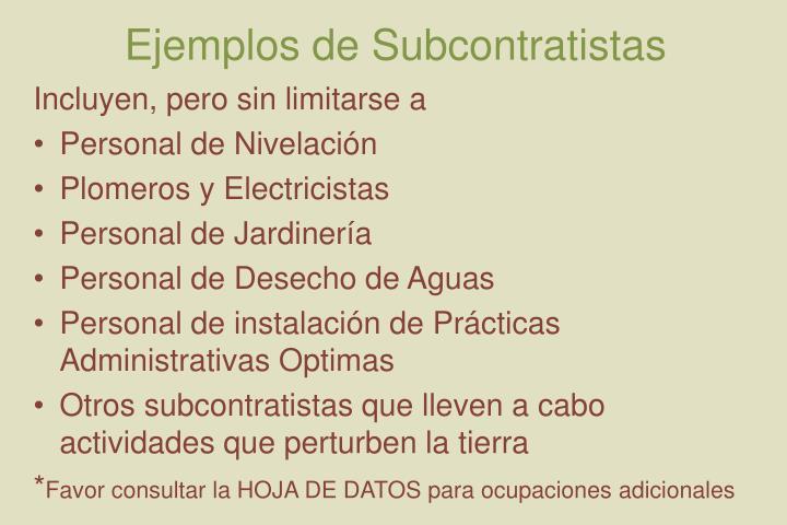 Ejemplos de Subcontratistas