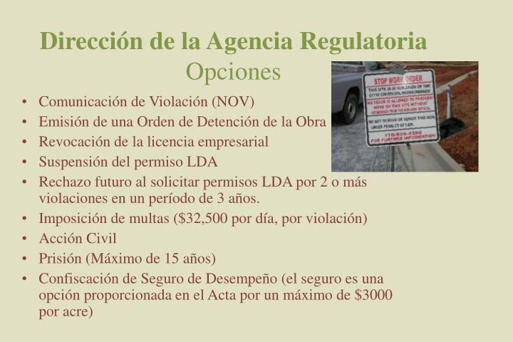 Dirección de la Agencia Regulatoria