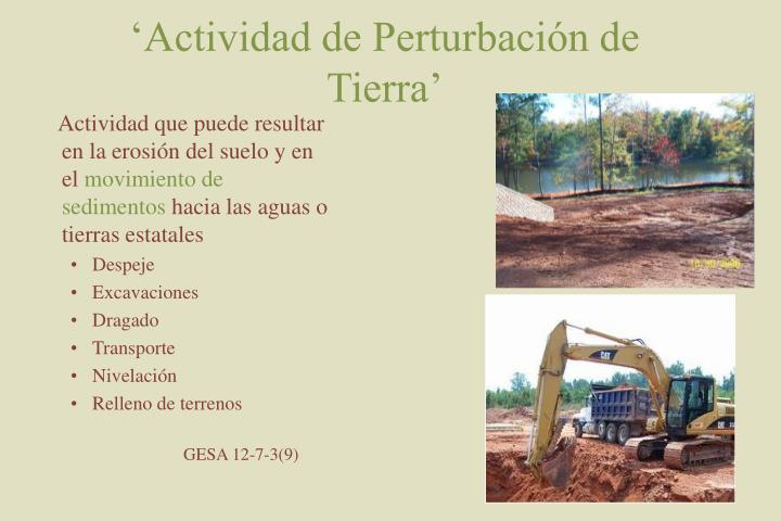 'Actividad de Perturbación de Tierra'