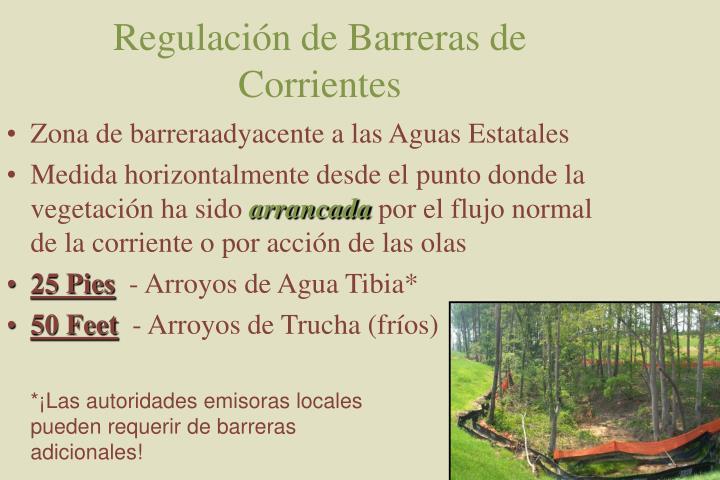 Regulación de Barreras de Corrientes