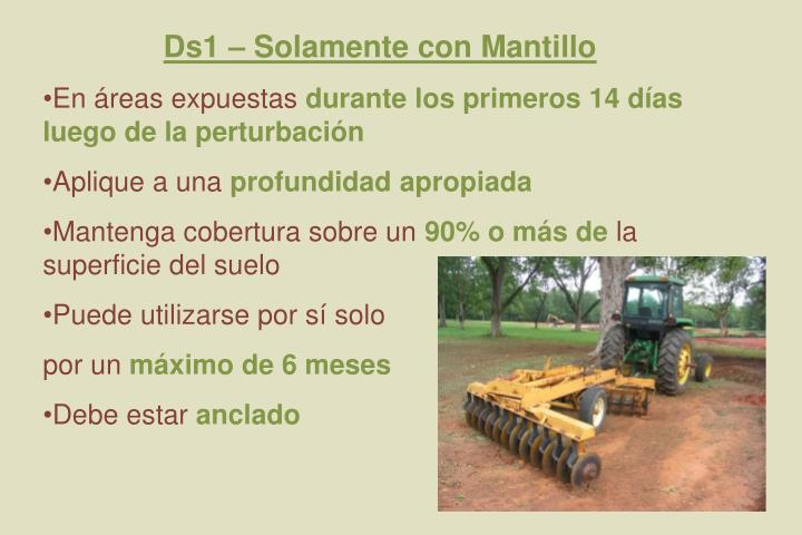 Ds1 – Solamente con Mantillo