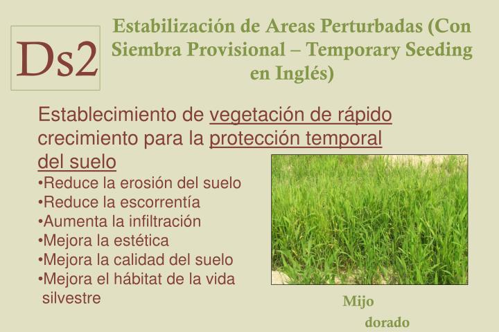 Estabilización de Areas Perturbadas (Con Siembra Provisional – Temporary Seeding en Inglés)