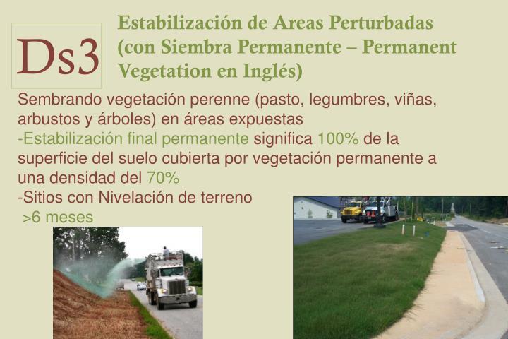 Estabilización de Areas Perturbadas