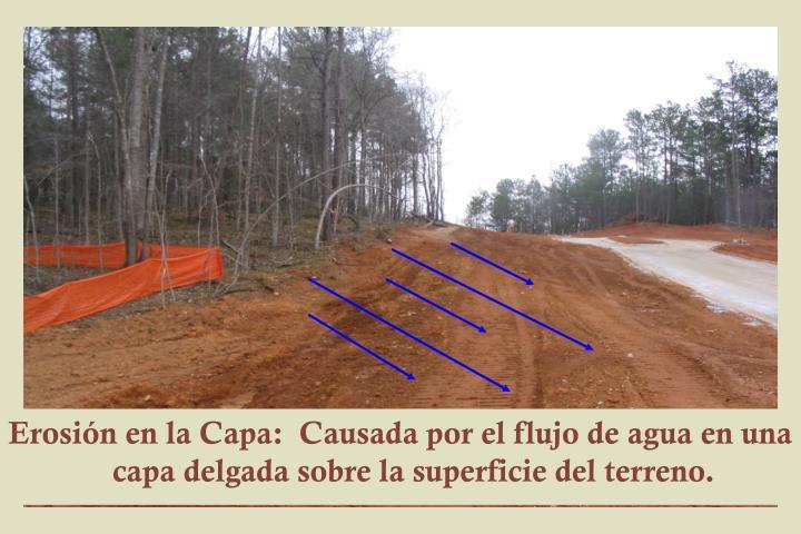 Erosión en la Capa:  Causada por el flujo de agua en una capa delgada sobre la superficie del terreno.