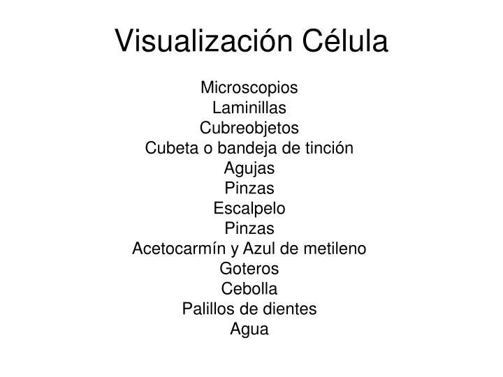 Visualización Célula