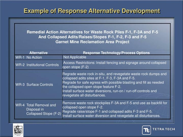 Example of Response Alternative Development