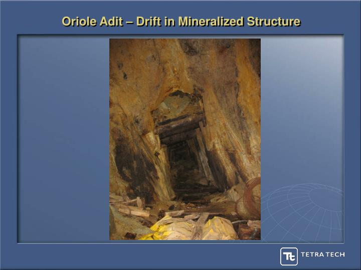 Oriole Adit – Drift in Mineralized Structure