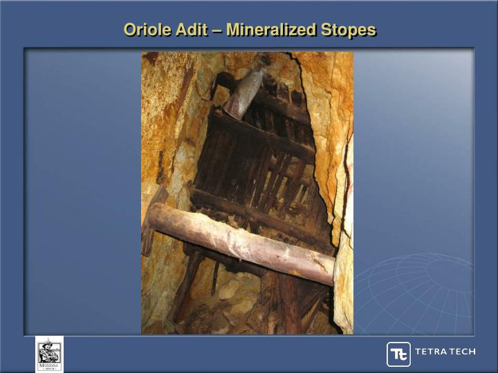 Oriole Adit – Mineralized Stopes