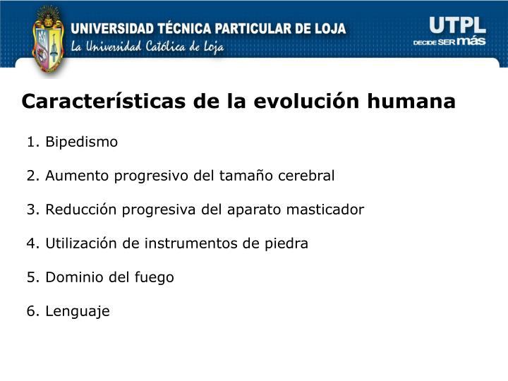 Características de la evolución humana