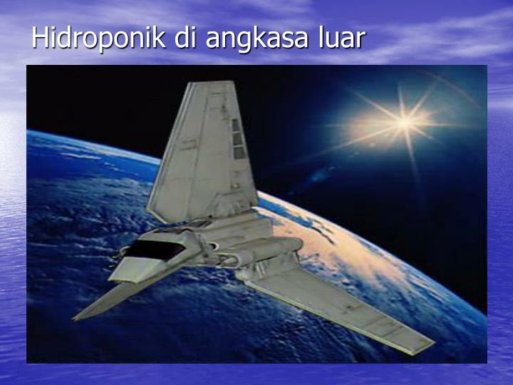 Hidroponik di angkasa luar