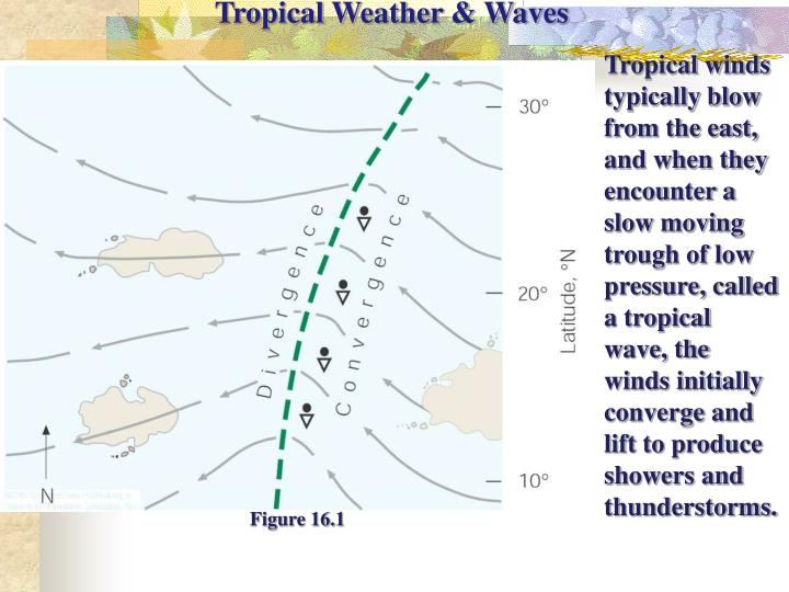 Tropical Weather & Waves