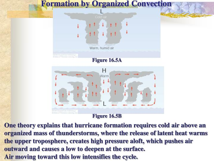 Formation by Organized Convection