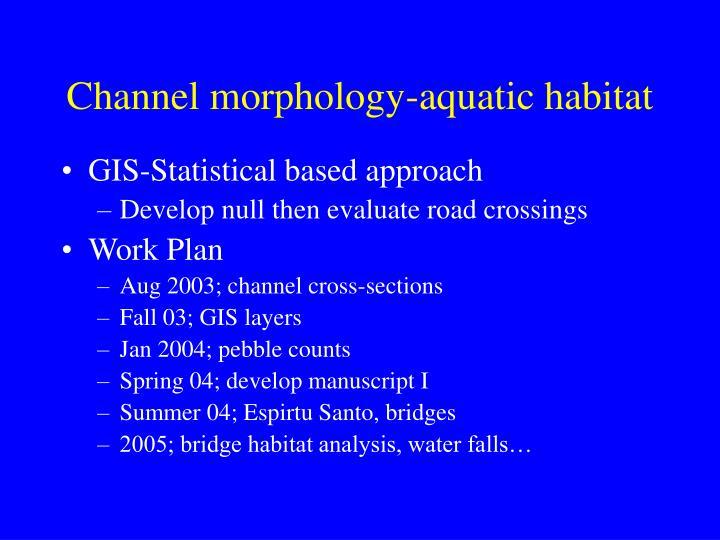 Channel morphology-aquatic habitat